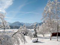 Winter+Schneelandschaft